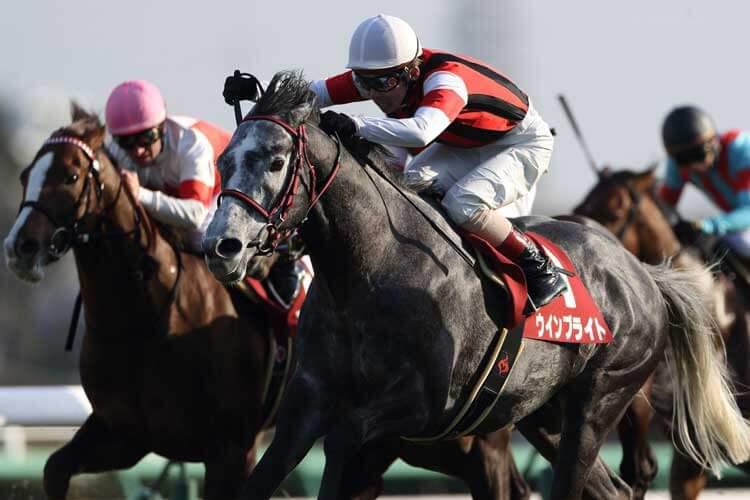 中山記念2020 ウインブライトに不安要素?出走予定馬とデータ分析