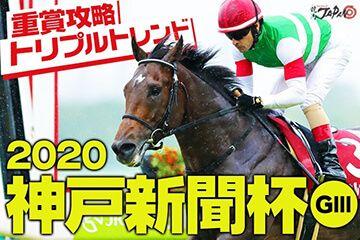 神戸新聞杯PR